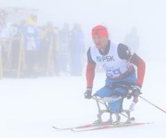 Россия увеличила запас золотых паралимпийских медалей на треть